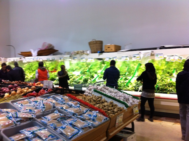SCN interior produce.jpg