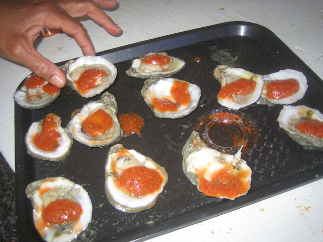 15-oysters.JPG