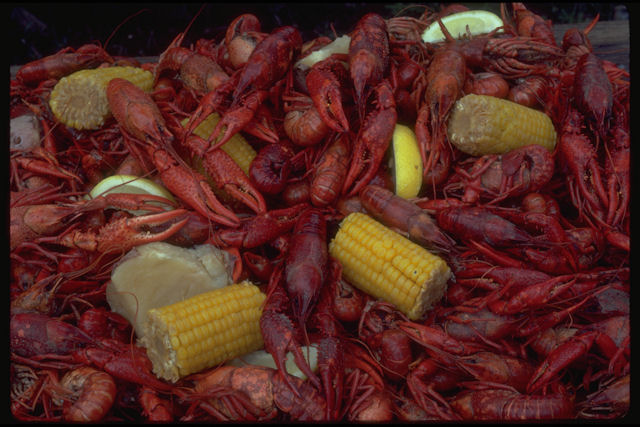 boiled crawfish corn and potatoes.jpg