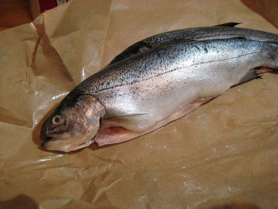 Smoked Trout 016.JPG