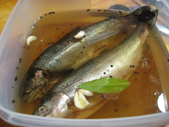 Smoked Trout 023.JPG