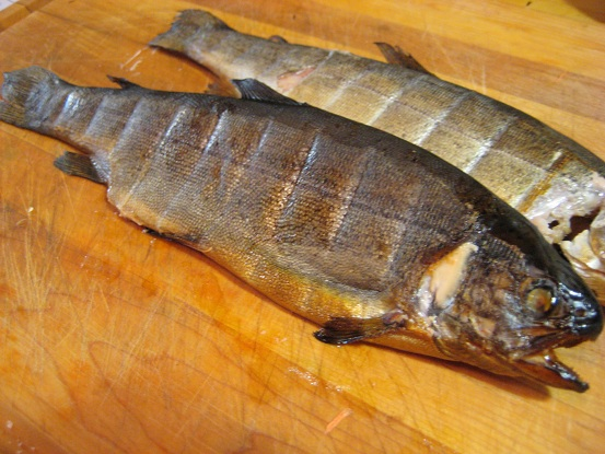 Smoked Trout 044.JPG