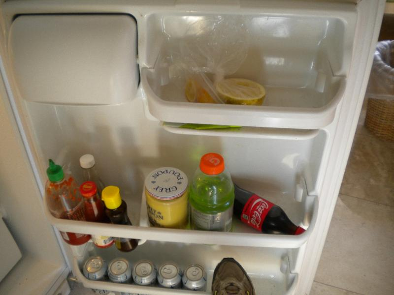 fridge door.JPG