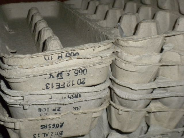 Egg cartons1.jpg