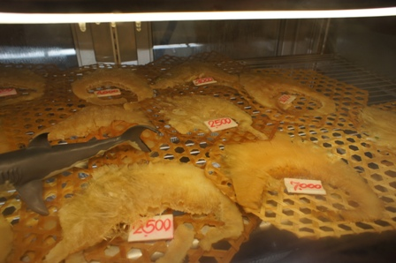 Chinatown - Sharks Fin.JPG