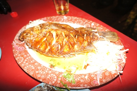 Chinatown - Fried Fish.JPG