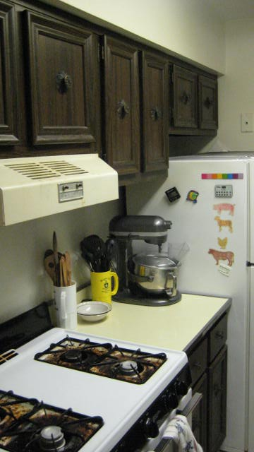 kitchen tour 002.JPG
