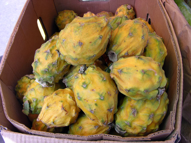 Pitahaya.jpg