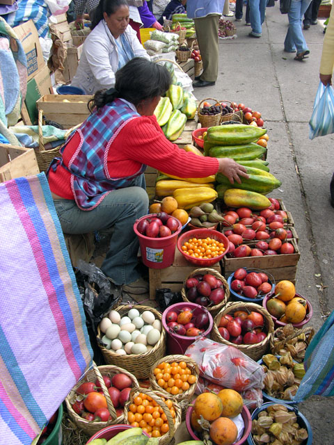 Fruit Seller.jpg