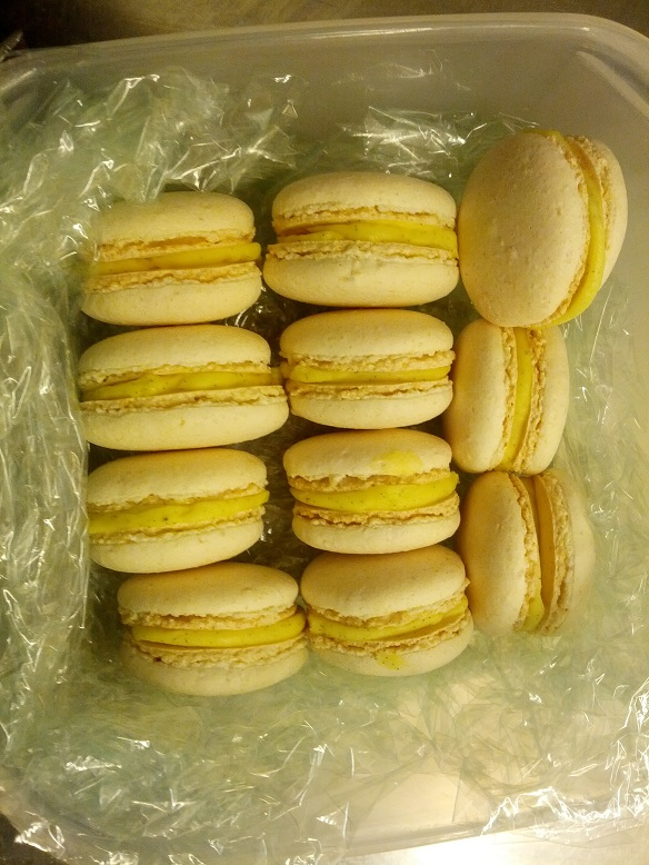 macaron.jpg