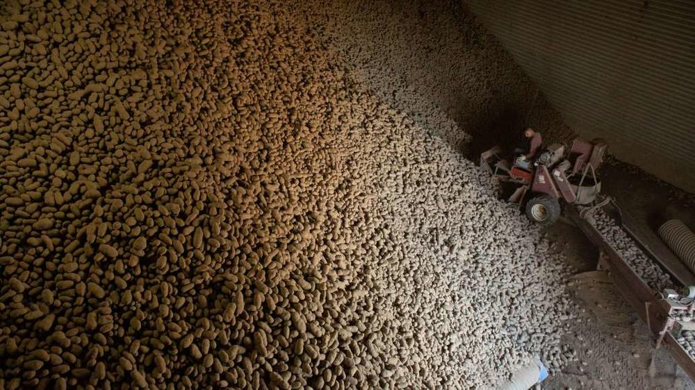 A potato warehouse in Warden, Wash., on Friday. The Agriculture Department will soon begin spending $300 million a month to buy surplus farm goods for food banks.
