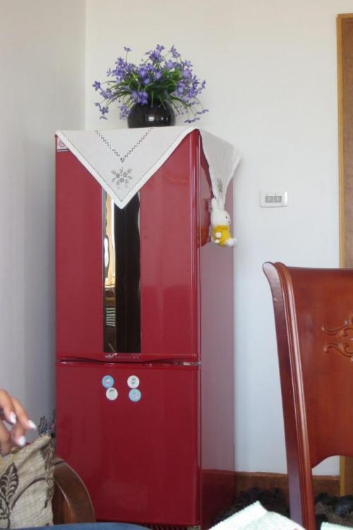 150527 039 InLaws Refrigerator 1.JPG