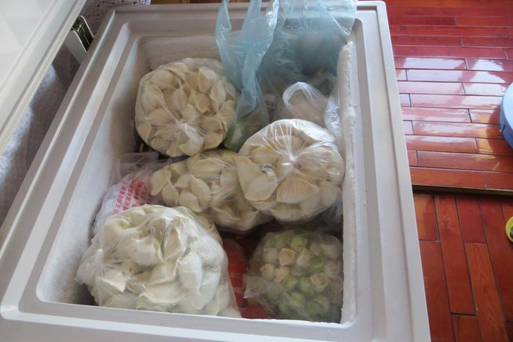 150527 038 InLaws Dumpling Freezer.JPG