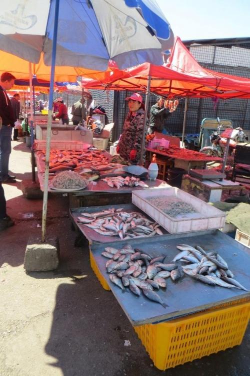 150527 024 Yakeshi Market Fish.JPG