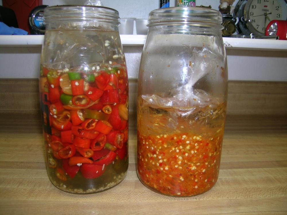 Hot pepper ferments.JPG