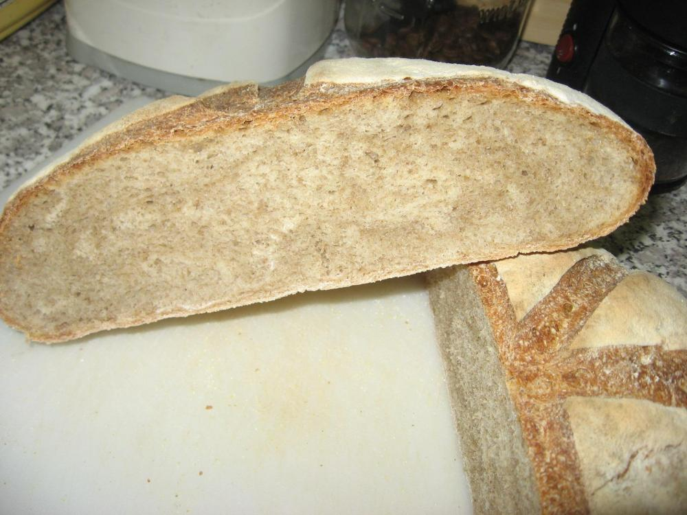 Rustic bread cut open.JPG