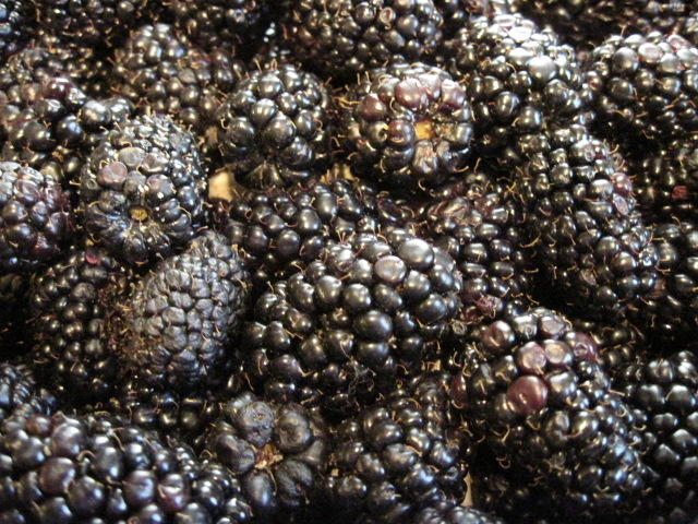 Post in eG Cook-Off #78: The Cane Berries of Summer