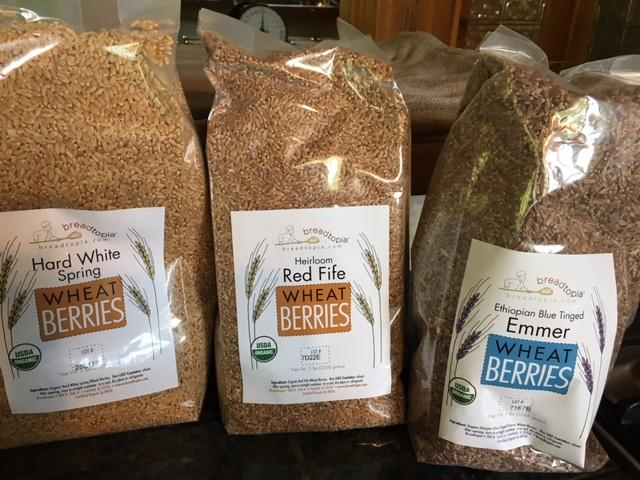 Milling Heritage and Ancient Grains for Baking Bread and Beyond