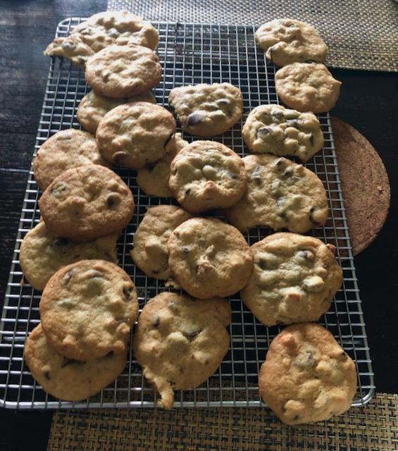 204942240_Chocolatechipcookies06-04.jpeg.e7ca3c45a31bcee05ae5eb3b9bdf78b0.jpeg