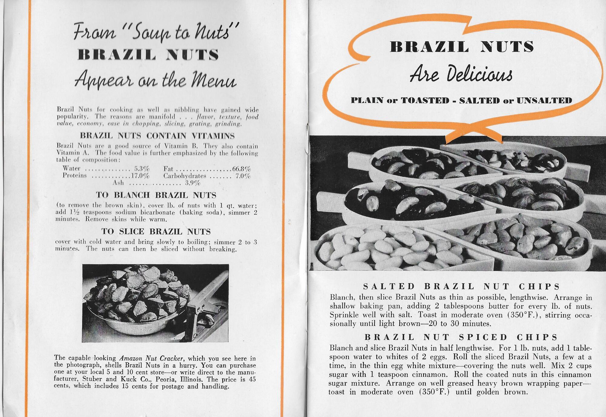 Brazil Nuts #2 (2).jpeg